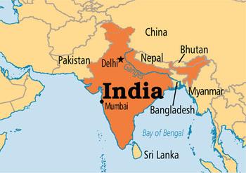 سید تقی رضا عابدی: شیعیان هند باید به لحاظ کیفی در سطح بالایی باشند