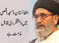 رهبر شیعیان پاکستان حمله تروریستی به افغانستان و فلسطین را محکوم کرد